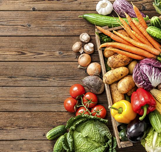 Acibalc promove 1º curso do ano para manipuladores de alimentos