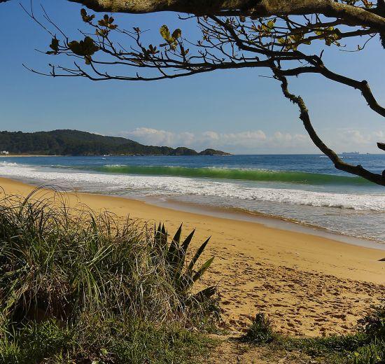 Praias agrestes de BC são aprovadas no programa Bandeira Azul