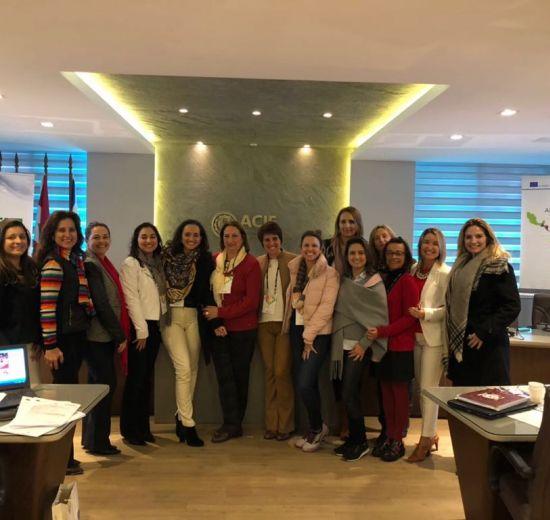 Programa de Mentoria e Empreende Mulher em pauta na diretoria do CEME